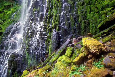 Lower Proxy Falls, Three Sisters Wilderness, Oregon Cascades.