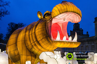 Longleat_Festival_of_Light-17