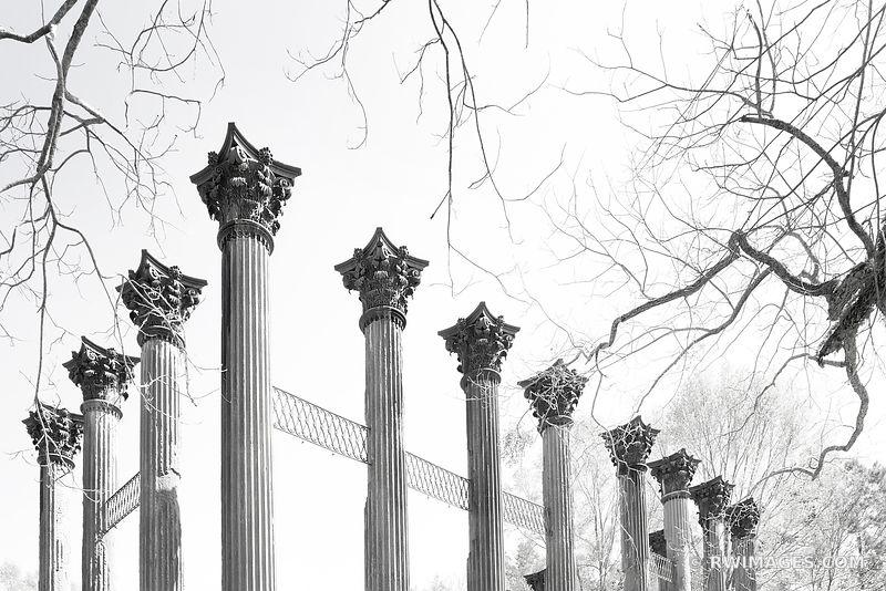 WINDSOR RUINS NATCHEZ TRACE PARKWAY MISSISSIPPI BLACK AND WHITE