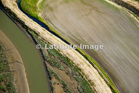 Farm Fields And River Channel Patterns, Skagit Valley, Mount Vernon