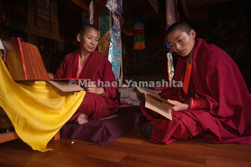 Buddhist nuns at Shusong Nunnery in Benzilan, study ancient texts.