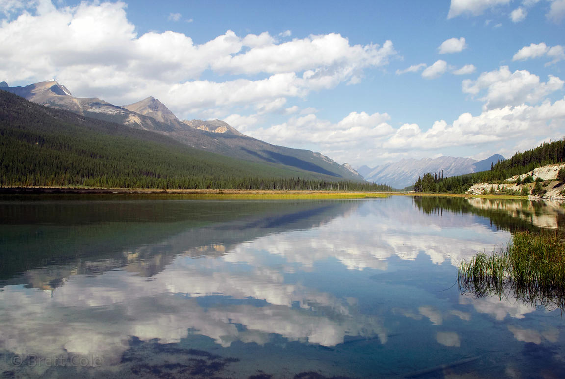 Reflections in unknown lake, Jasper NP, Canadian Rockies.