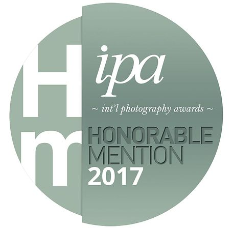IPA 2017 : Honorable Mention
