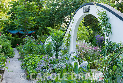 Moon gate marks passage from the kitchen garden to the Wandering Garden, framed by borage and trained fruit trees with Gerani...