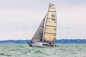 Wombat, NED17M, Grainger 075 trimaran, Round the Island Race 2017, 201707011164