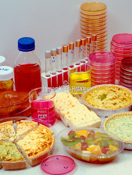 Processed food testing laboratory