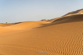 Sand dunes in the Erg Chebbi in southeastern Morocco.