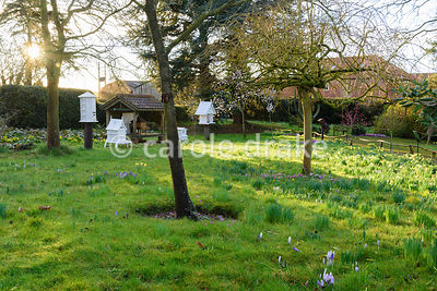Victorian apiary at Hodsock Priory, Blyth, Notts