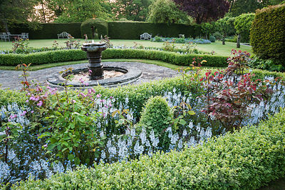 Box edged beds filled with roses, clipped box and pale blue Veronica gentianoides in the formal garden. King John's Nursery, ...