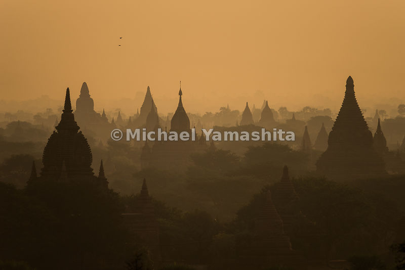 Temple spires silhouetted in sepia light point skyward in Bagan. About 2,500 temples, pagodas and monasteries - some half-rui...