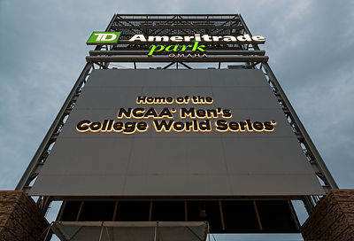 College World Series Sign