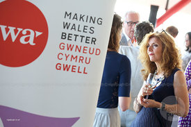 Institute of Welsh Affairs 30th Anniversary