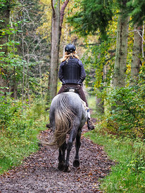 Horseback riding in Kongelunden