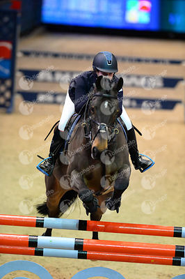 Andrews Molly, (Gbr) and WILANDO B