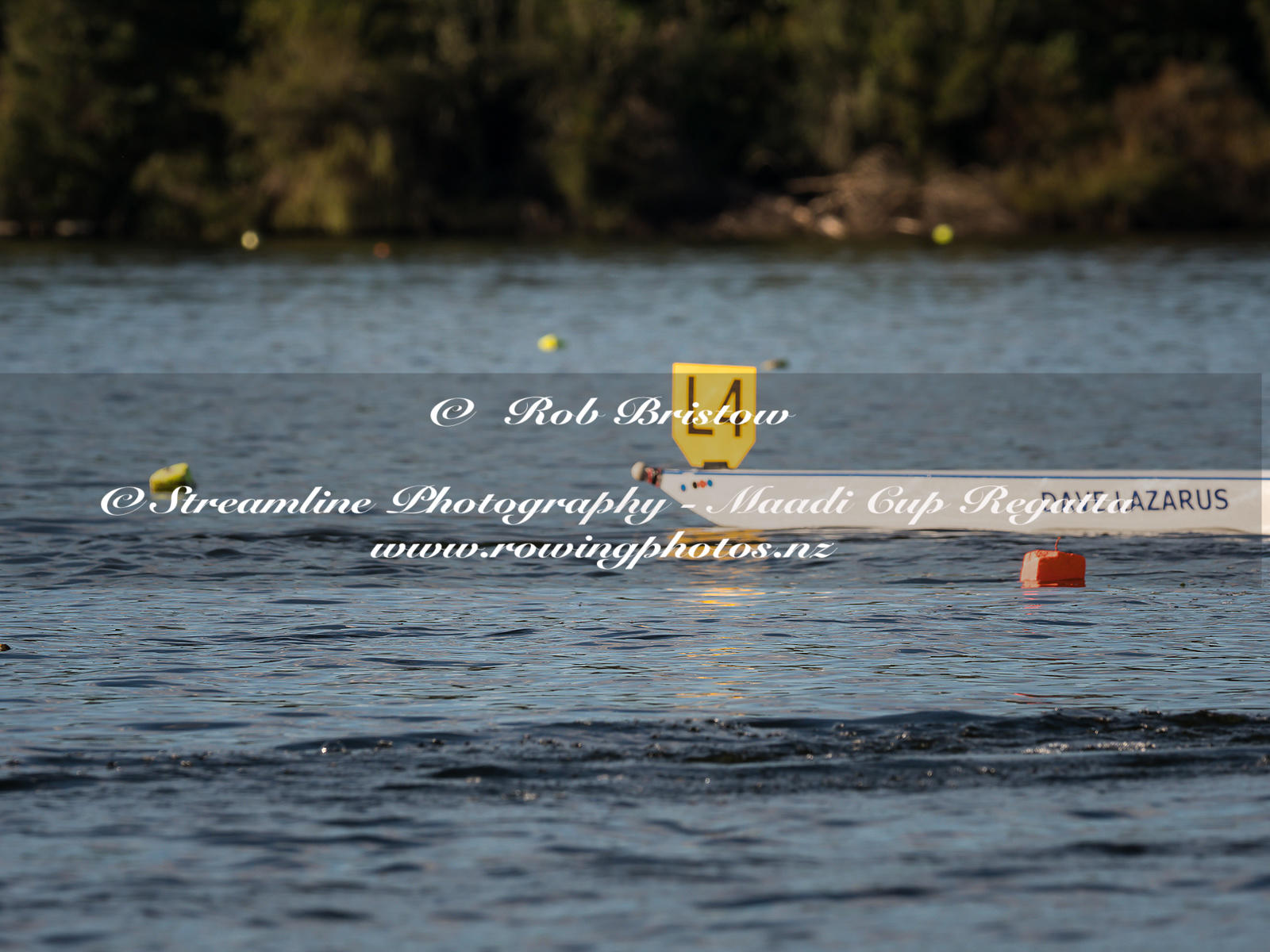 Taken during the World Masters Games - Rowing, Lake Karapiro, Cambridge, New Zealand; Tuesday April 25, 2017:   6056 -- 20170...
