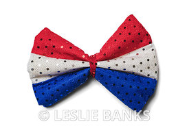 American Flag Color Bow Tie