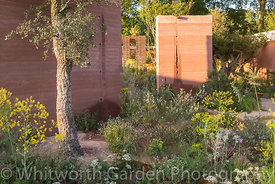 Photographer: Rob Whitworth. The M&G Garden. Sponsor: M&G. Designer: Sarah Price.