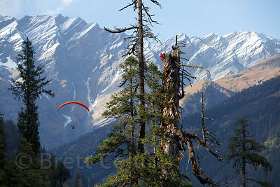 Indian tourists paragliding in the Solang Valley, Manali, India