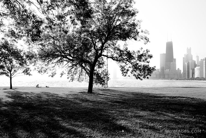 CHICAGO LAKEFRONT LINCOLN PARK CHICAGO BLACK AND WHITE