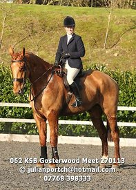 062_KSB_Gosterwood_Meet_270113