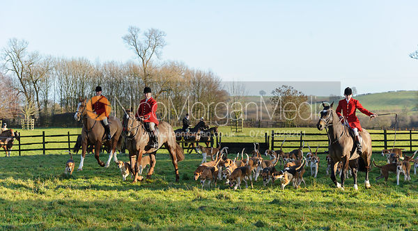Huntsman and hounds arrive at the  Belvoir Hunt meet at Eaton Grange 2/1