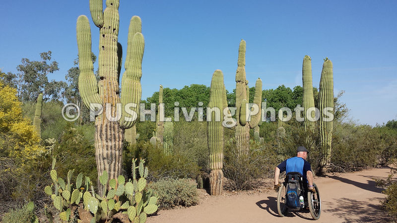 Man using a wheelchair exploring a desert national park