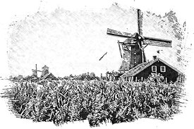 17.5_AMS_windmill_sketch_B_W