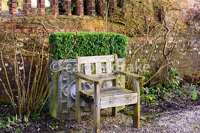 Wooden seat in front of clipped box in a lead planter at Hodsock Priory, Blyth, Notts