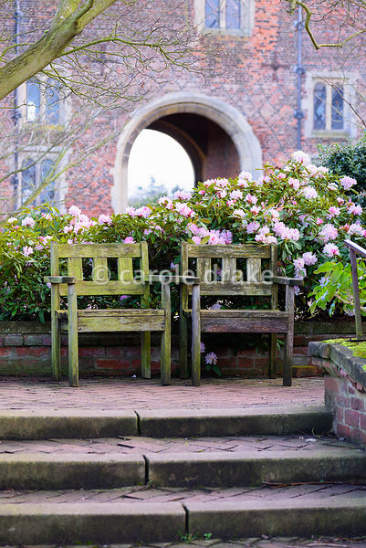 A pair of wooden seats backed by pale pink rhododendron and the historic gatehouse at Hodsock Priory, Blyth, Notts