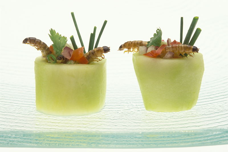 Canapes in the form of cucumber cups containing roasted mealworms with a salad of chopped chives, coriander, shallots and tom...