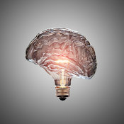 Light Bulb Brain