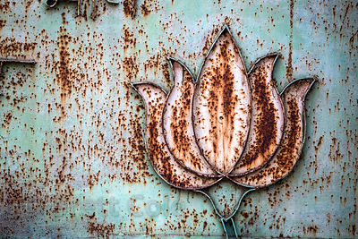 Weathered and rusted lotus on a metal wall, Pushkar, Rajasthan, India