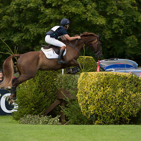 2015 The Amlin Plus Eventers Challenge