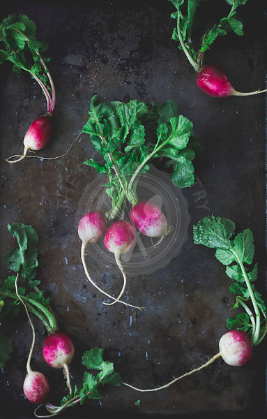 Pink and White Radishes with Greens on Dark Background