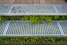 Metal grid steps underplanted with ferns and shade loving plants lead to an area of recycled wooden decking. © Rob Whitworth