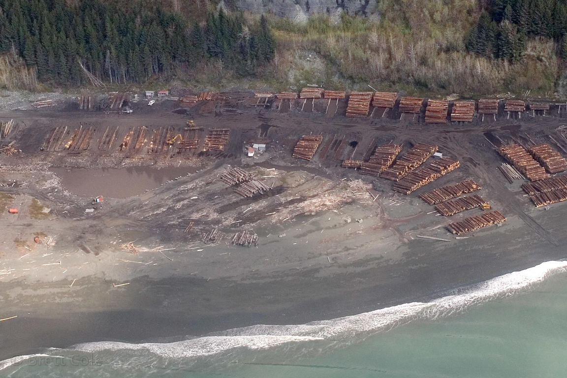 Clearcut logging on the Lost Coast, near Yakataga, Alaska
