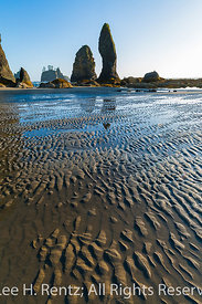 Point of Arches and Shi Shi Beach in Olympic National Park