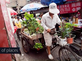 a flower seller pedals his tricycle through a market in Shanghai