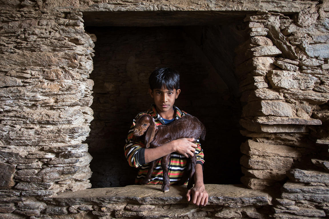 A boy holds his baby goat in a barn, Udaipur Kalan village, Rajasthan, India