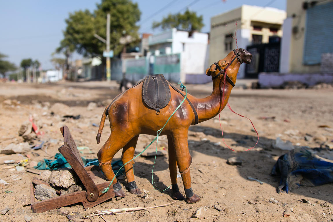 A toy camel, Pushkar, Rajasthan, India