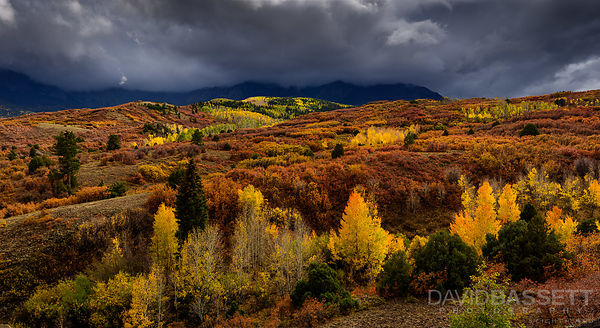 Fifty Shades of Fall | San Juan Mountains, CO