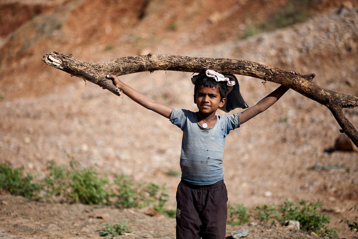 A boy carries a large stick on his head near Kharekhari, Rajasthan, India