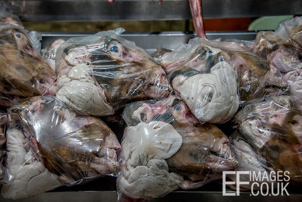 Sheep Heads In Plastic Bags For Sale At A Market In Iraq