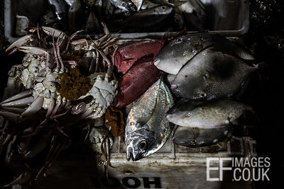 Fish and crabs for sale at the Kota Kinabalu Fish Market. Sabah, Malaysia, March 2018