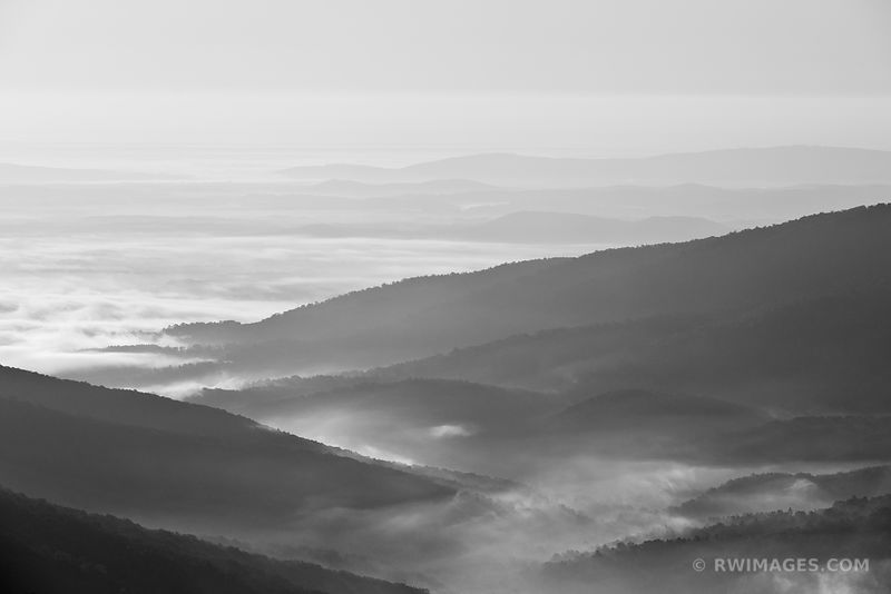 Shenandoah National Park Virginia - Black and White Photos