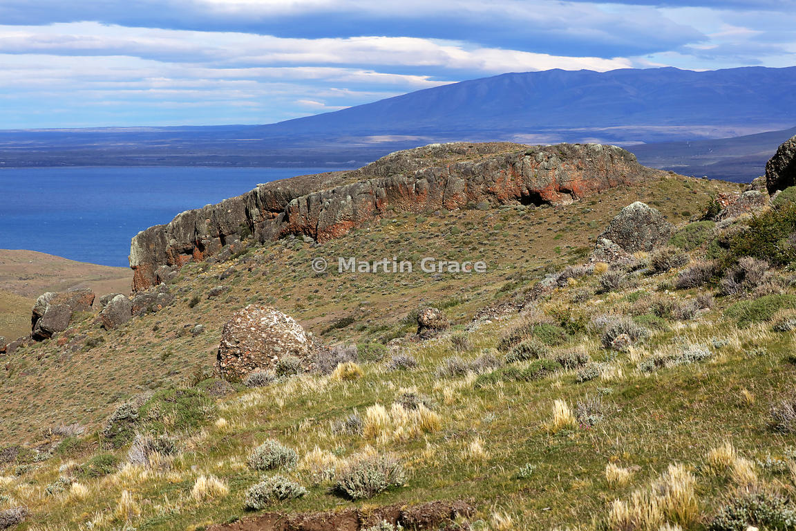 Patagonian steppe habitat typical of the Patagonian Puma (Puma concolor patagonica), with conglomerate outcrop, Region XII Ma...