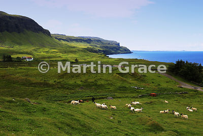 Looking SW over Gribun to cliffs of Ardmeanach, Isle of Mull, Scotland