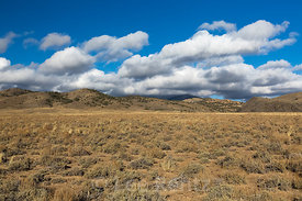 Sagebrush Landscape with Toquima Range in Nevada