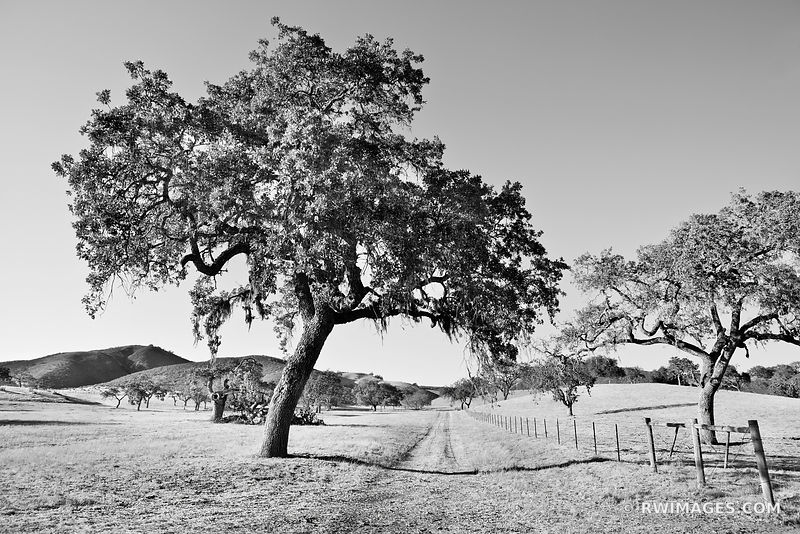 SANTA YNEZ VALLEY SANTA BARBARA COUNTY CALIFORNIA BLACK AND WHITE