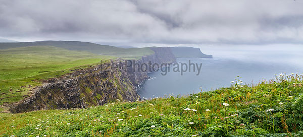 The misty sea cliffs of Ramasaig as wet weather approaches. Isle of Skye, Scotland, UK.
